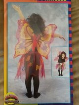 Cute Butterfly Costume in Fort Campbell, Kentucky