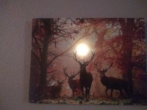 Light up elk canvas in Camp Pendleton, California