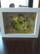 dried flowers in frame in Okinawa, Japan