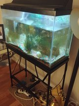 30 gal aquarium and stand moving asap in Fort Belvoir, Virginia