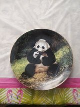 PANDA BEAR COLLECTOR PLATE in Cherry Point, North Carolina