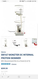 skimz sm167 DC proteins skimmer in Okinawa, Japan