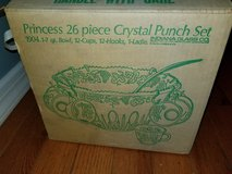 Punch bowl and cups in Ottawa, Illinois