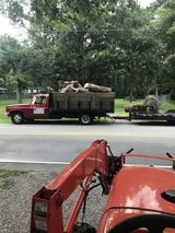 You need debris hauled out your property in Beaufort, South Carolina