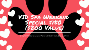 VID Spa Weekend Board and Grooming Special in Fort Campbell, Kentucky
