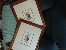 2 crab pics in Beaufort, South Carolina