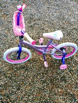 Bicycle in Spring, Texas