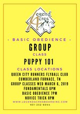 Group Dog Classes at Queen City Fly Ball Club in Fort Campbell, Kentucky