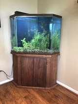 85 Gallon Corner Fish Tank, Stand and Accessories in Kingwood, Texas