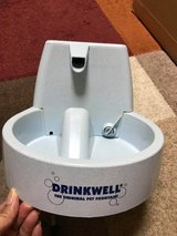 DrinkWell Water Fountain for Dogs in Okinawa, Japan
