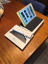 iPad Pro 9.7 Rose Gold 256 GB WiFi + Cellular in Ramstein, Germany