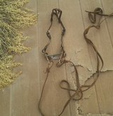 Bridle w snaffle bit and halter in Alamogordo, New Mexico