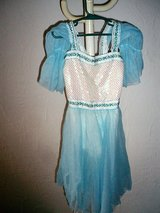 Blue princess dress costume for Fasching size 8/10 in Stuttgart, GE