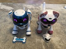 2 Robot cat & dog in Ramstein, Germany