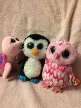 Ty The Beanie Boo's collection in Naperville, Illinois