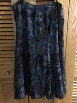 Blue Ann Taylor skirt in Okinawa, Japan