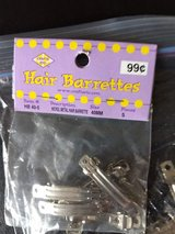 Small Crafting Barrettes in Naperville, Illinois