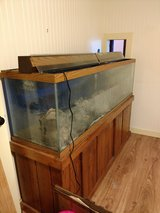 125 Gallon Fish Tank with ALL supplies in Houston, Texas