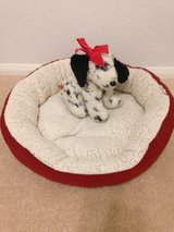 Small pet bed in Yucca Valley, California