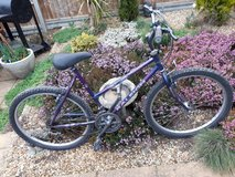 Purple Raleigh Enigma in Lakenheath, UK
