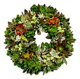 Wire Wreath Frame for Succulent Wreaths in Yucca Valley, California
