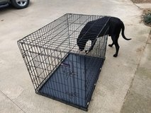 Petmate XL Wire Crate in Fort Campbell, Kentucky