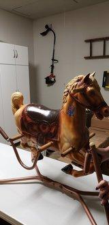 Hobby horse in Joliet, Illinois