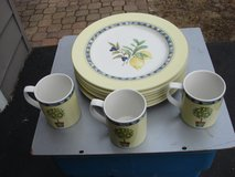 """SEVEN 11"""" PLATES AND 3 MATCHING CUPS. in Aurora, Illinois"""