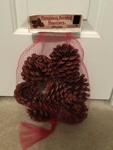 NIP Cinnamon Scented Pinecones in Camp Lejeune, North Carolina