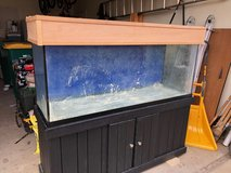 110 Gal Fish Tank in Aurora, Illinois