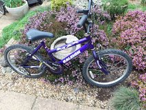 Purple Raleigh Max in Lakenheath, UK
