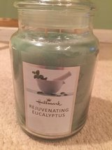 Hallmark 2 wick candle rejuvenating eucalyptus in Oswego, Illinois