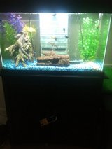 25 gallon fish tank and stand in Fort Riley, Kansas