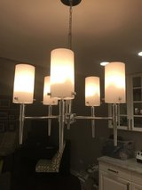 Modern Silver & frosted glass 5 Light Chandelier Light fixture in Wheaton, Illinois