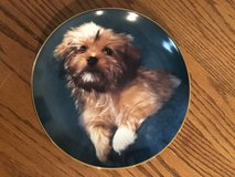 """Yorkie Puppy Plate """"Oh How Cute"""" made by Armstrong Art on Porcelain in Naperville, Illinois"""