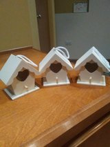 3 ready to paint birdhouses in Bolingbrook, Illinois