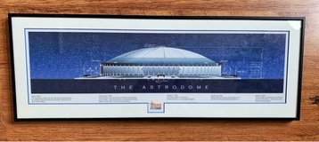 Astrodome Historical Print- HLSR - Rodeo Houston in Tomball, Texas