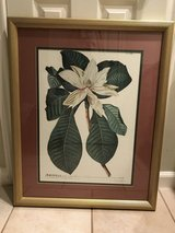 framed picture in Kingwood, Texas