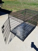 Large Pet Kennel in Clarksville, Tennessee