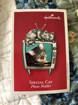 Special cat photo holder ornament in Lakenheath, UK