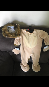 Baby Lion costume in Aurora, Illinois