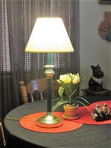 lamp great for mens room or office in Alamogordo, New Mexico