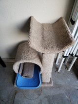 Cat Tree +extras in Fort Leonard Wood, Missouri