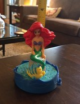 Ariel & Flounder in Joliet, Illinois