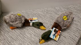 "12"" Plush Mallard Duck Chew Toy in Plainfield, Illinois"