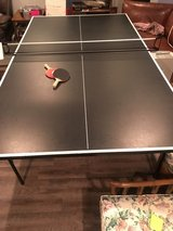 Ping Pong Table in Joliet, Illinois
