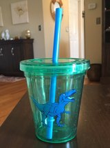 Dino Glass/Lid/Straw in St. Charles, Illinois