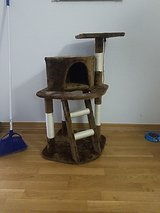 cat tree in Stuttgart, GE