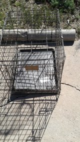Dog Crate for small animal in Alamogordo, New Mexico