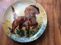 THE IRISH SETTER Collectible plate in Oswego, Illinois